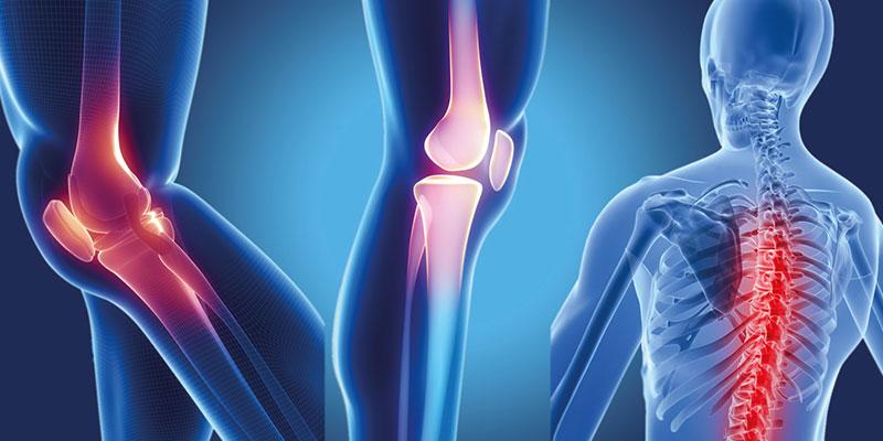 Department of Orthopedics and Traumatology